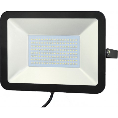 ĐÈN PHA LED FL100W T/V