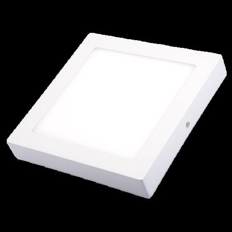 ĐÈN LED DOWNLIGHT NỔI TRẦN NTV300-24W-T/V