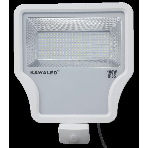 Đèn pha led cảm ứng hồng ngoại cao cấp FL1S-100W