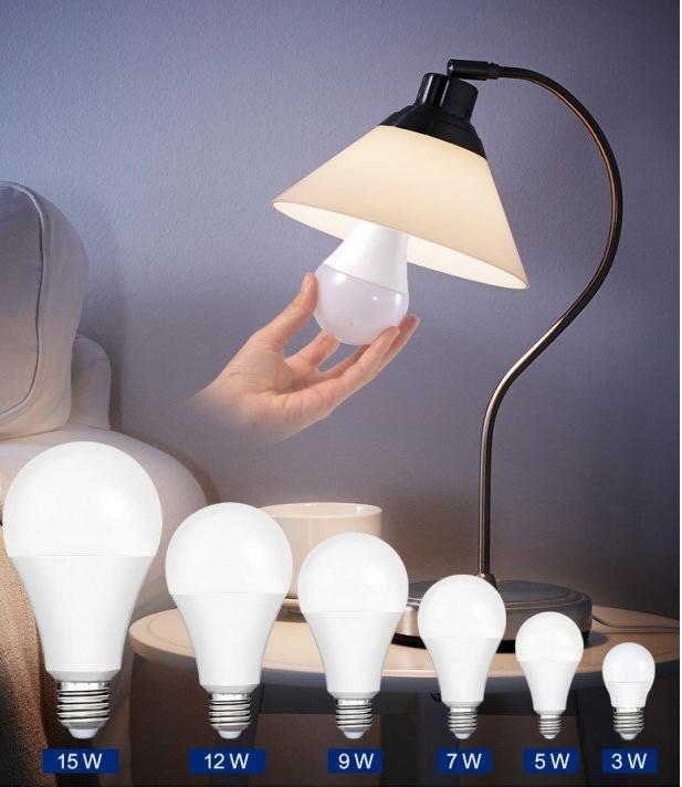 Bóng đèn tròn với nhiều loại công suất khác nhau